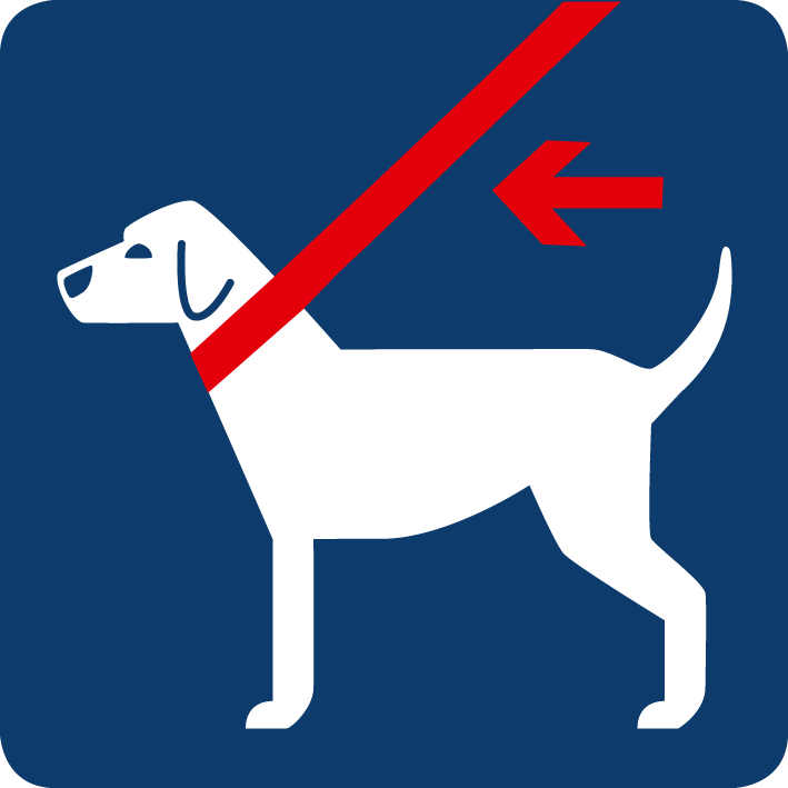 01e-Hunde Anleinpflicht