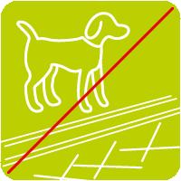 Hund auf loipe Zeichenfläche 1