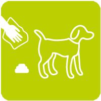 Hundekot Zeichenfläche 1