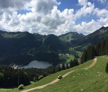 BlickSpitzingsee