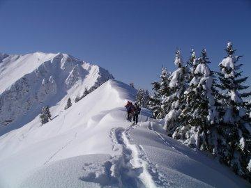 Schneeschuh Schwarzwasser Hütte (60)