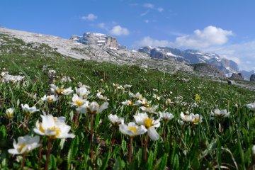 Wandern Brenta Gardasee (2)