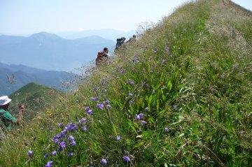 Wandern Brenta Gardasee (42)