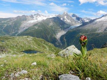 Wandern Rund um Mont Blanc Frankreich (5)
