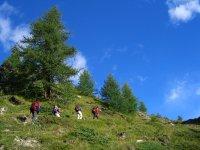 Wandern Walserweg III Schweiz(7)