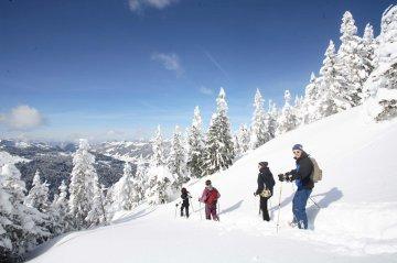 SchneeschuhAllgäuRiedbergerhorn (12)