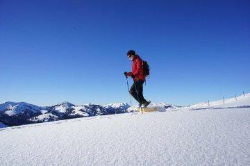 SchneeschuhAllgäuzumFellhorn (15)