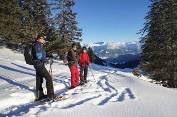 SchneeschuhAllgäuzumFellhorn (25)
