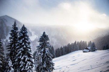 Schneeschuh2018 03