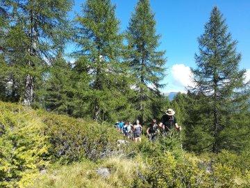 Wandern Ortler Brenta 5