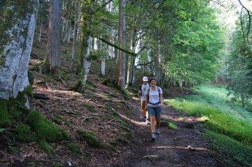 Bregenzer Wald Wandrung