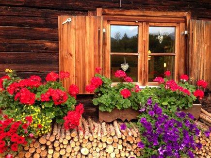 Oberstdorfer Haus mit Blumenschmuck