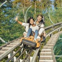 Alpsee Coaster Richtig Spass