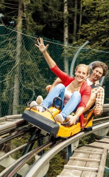 Alpsee Bergwelt Alpsee Coaster