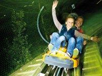 Alpsee Coaster Nachtrodeln