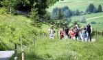 Gemeinsam Spaß in der Alpsee Bergwelt