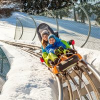 Alpsee Coaster Winter 1 highres