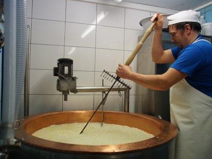 Schneiden mit der Käseharfe
