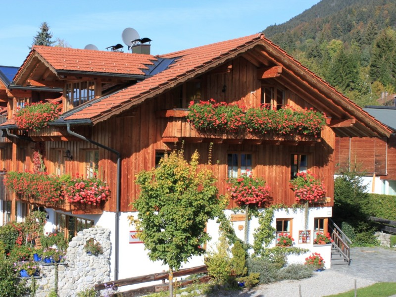 Haus an der Schanze im Sommer