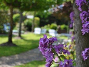 Garten Inselhotel Arfsten