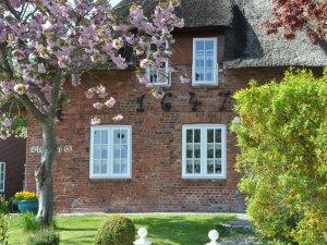 Urlaub auf Föhr: Ferienwohnungen im Ferienhaus