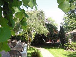Garten mit Terasse: Inselhotel Arfsten (Föhr)