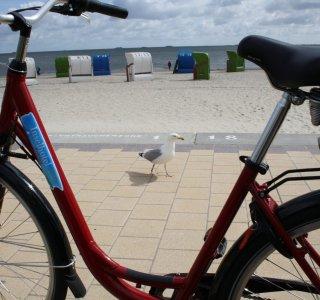 Fahrradfahren auf Föhr