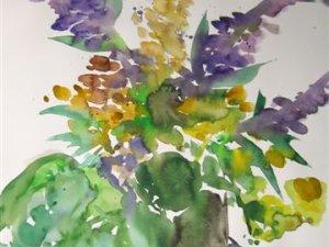 Blumen aus Heimhofers Garten 2