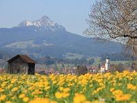 Wertach im Frühling