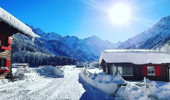 Tramino Winter bild