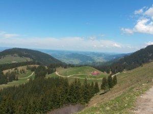 Blick zur Alpe Gund
