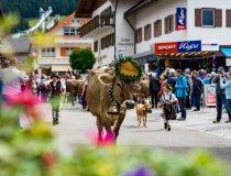 2017-09-11 Alpe Schlappold-011-3000