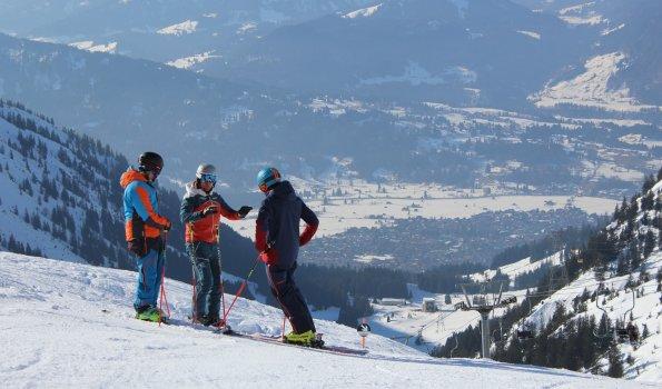 Skitechnikschule David