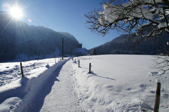 Winterweg nach Ried