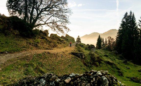 Wanderung durch die mystische Berglandschaft