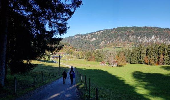zur Alpe Dornach
