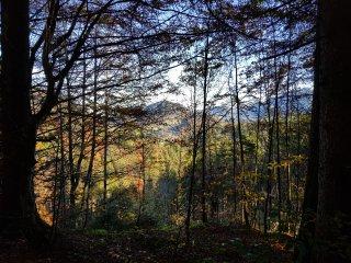 Aufstieg Sessel Herbst
