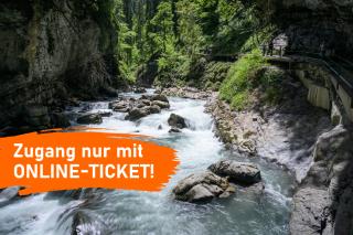 Online-Ticket
