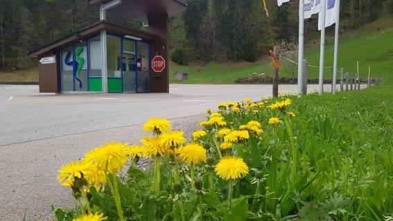 Parkplatz P1 Tiefenbach Sommer