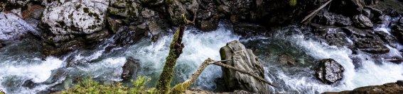 Breitachklamm Schichten Fels Wasser Blätter