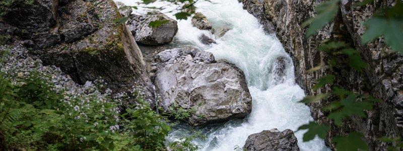 Wasser der Breitach