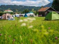 Zelte Campingplatz Waldesruh
