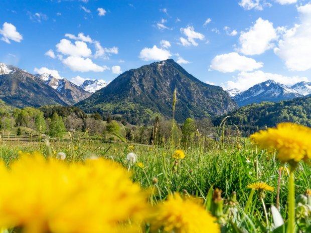 Frühlingsgefühle am Moorweiher