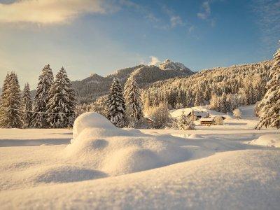Schneebedeckte Wiese vor dem Suchergebnisse Webergebnisse Karatsbichl