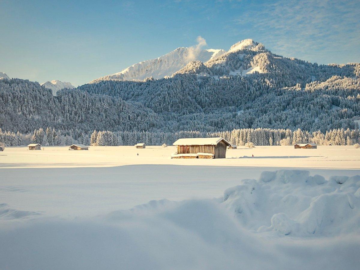 Winterliche Wiesen mit Blick auf das Söllereck