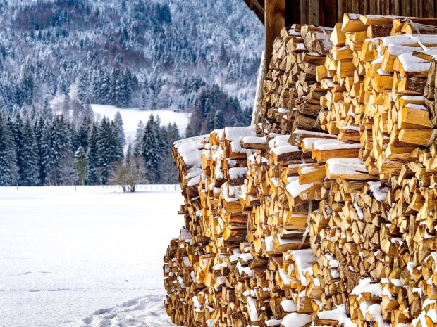 Holzbeig in den Oberstdorf Wiesen