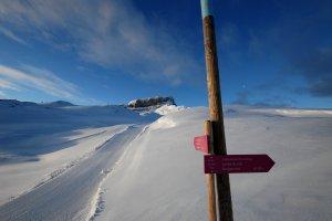 Winterwanderweg Gottesacker