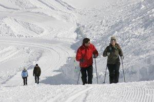 Bestens präparierter Winterwanderweg