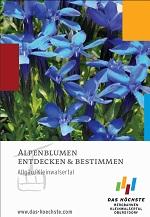 Alpenblumenkompass