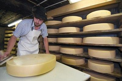 Käsepflege auf der Alpe Schlappold